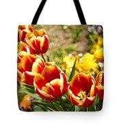 Tulips In Japan Tote Bag