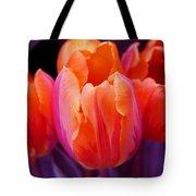 Tulips In Orange And Purple Tote Bag