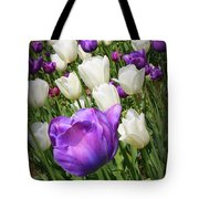 Tulips In Purple And White Tote Bag
