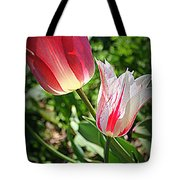 Tulips In Red And White Tote Bag
