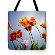 Tulips In Sun Light Tote Bag by Trevor Wintle