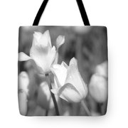 Tulips - Infrared 13 Tote Bag
