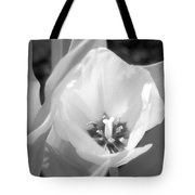 Tulips - Infrared 33 Tote Bag