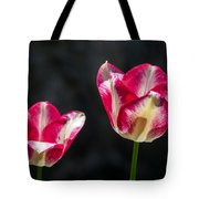 Tulips Of A Kind Tote Bag