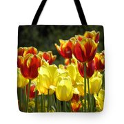 Tulips Of Germany Tote Bag