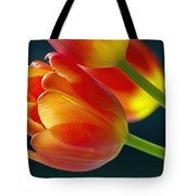 Tulips On Black 2a Tote Bag