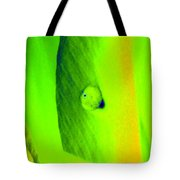 Tulips - Perfect Love - Photopower 2194 Tote Bag