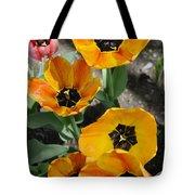 Tulips Tp Tote Bag