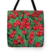 Tulips Tulips And Tulips Tote Bag