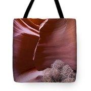 Tumbleweed In The Canyon Tote Bag