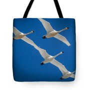 Tundra Swans Tote Bag