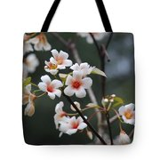 Tung Oil Blossoms Tote Bag