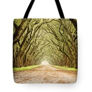 Tunnel In The Trees Tote Bag