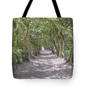 Tunnel Of Trees Tote Bag