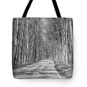 Tunnel Of Trees Black And White Tote Bag