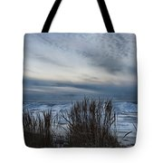 Tunnel Park Through The Grass Holland Michigan Tote Bag