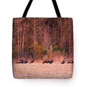 8964 - Turkey - Eastern Wild Turkey Tote Bag