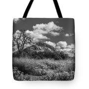 Turkey Hill Bw Tote Bag