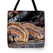 Turkey Tail Fungi In Autumn Tote Bag