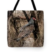 Turkey Vulture Portrait Tote Bag