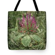 Turkish Rose Clover Tote Bag