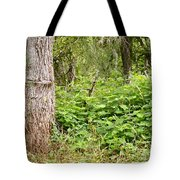 Turk's Cap And Tree Tote Bag