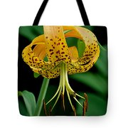 Turk's Cap Lilly Tote Bag