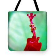 Turks Cap With Visitors Tote Bag