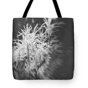 Turn On The Light Tote Bag