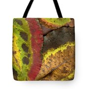 Turning Leaves 2 Tote Bag