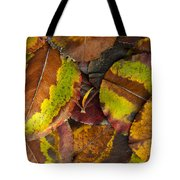 Turning Leaves 4 Tote Bag by Stephen Anderson