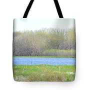 Turquoise Marsh Tote Bag