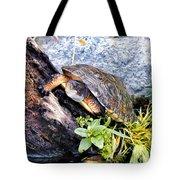 Turtle 1 Tote Bag