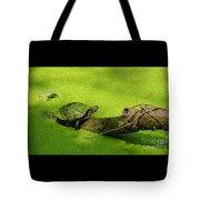 Turtle-190 Tote Bag