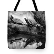 Turtle Bffs Bw By Denise Dube Tote Bag