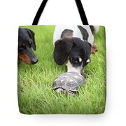 Turtle Chase Tote Bag