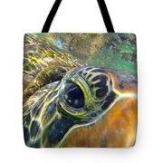 Turtle Eye Tote Bag