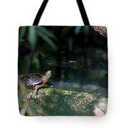 Turtle Grotto Tote Bag