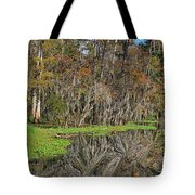 Turtle Haven Tote Bag