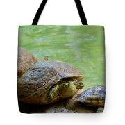 Turtle Ninjas Tote Bag