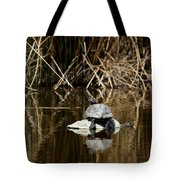 Turtle On Turtle Tote Bag by Ernie Echols