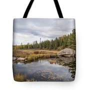Turtle Rock Cloudy Day Tote Bag