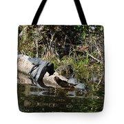 Turtles And Gator Tote Bag