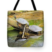 Turtles At The National Zoo Tote Bag