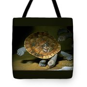 Turtles Float Tote Bag