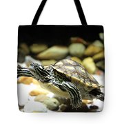 Turtles In The Water Tote Bag