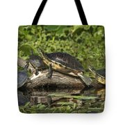 Turtles Sunning Tote Bag