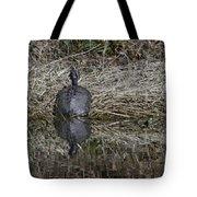 Turtles Sunning On Bank Tote Bag