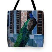 Tuscan Mascot Tote Bag
