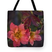 Tuscan Sun Rose Tote Bag